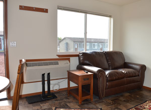 Telluride Living Room